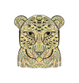 ethnic leopard vector image vector image