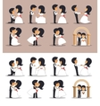 Just married couples in different poses vector image