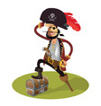 pirate cartoon isolated vector image