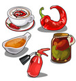 chile pepper in different forms fire extinguisher vector image