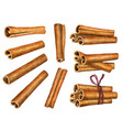 cinnamon sticks isolated on white background top vector image