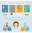 Veterinary clinic infographic chart banner vector image
