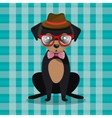 fashion dog puppy sit hat glasses bow checkered vector image