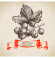 Red currants Hand drawn sketch berry vintage vector image