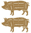 Barbecue Pig Design Element vector image