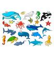 marine animal isolated cartoon icon set vector image