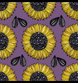 sunflower seamless pattern with flowers on a vector image