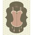 Vintage corset vector image