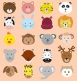 Cute Animals Faces Icons Collection vector image