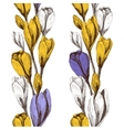 seamless pattern with crocus flowers borders vector image