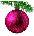 rose christmas ball or bauble and fir branch vector image