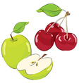 apple and cherrys vector image vector image