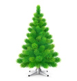 Green fluffy Christmas tree with cones vector image