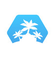 abstract hexagon icon with palm trees vector image