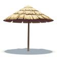 Palm Leaf Beach Umbrella vector image vector image