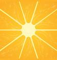 orange citrus fruit healthy vegan food vector image