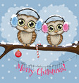 two owls on a branch vector image