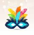 Colorful carnival or theater mask with feathers vector image