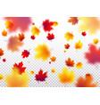 autumn flying red orange vector image