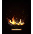 burning fire on a dark night background vector image