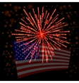 Independense Day of America vector image