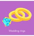 two isometric wedding rings vector image