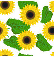 seamless pattern graphic sunflower vector image