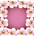 Frame with blossoming sakura japanese cherry tree vector image