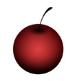 isolated cherry vector image