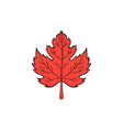 Maple Leaf Drawing vector image