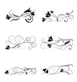 floral pattern with white background vector image