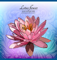 lotus flower on the decorated background floral vector image