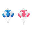Balloons for boy and girl vector image vector image
