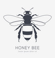 bee logo business icon for your company vector image