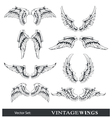 set of wings vector image