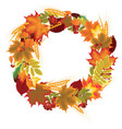 wreath of autumn leaves vector image