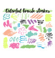 floral brush strokes vector image