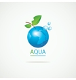Planet Earth in the spray of clean water vector image