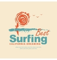 The best surfing in California vector image