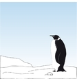 bakcground with penguin on the snow vector image