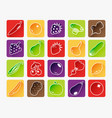 fruit and vegetable icons vector image