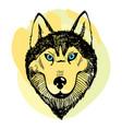 hand draw husky portrait vector image