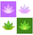 Lotus Symbol Icons Set Yoga and Spa Logo vector image
