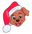 Little puppy with Santa hat 4 vector image