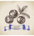 Blueberry Hand drawn sketch berry vintage vector image