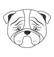 hand draw sad face dog vector image