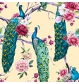 Watercolor peacock and flowers pattern vector image