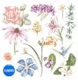Hand drawn garden flowers set vector image