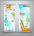 advertisement roll up business flyer or brochure vector image