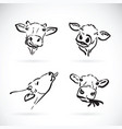 cow head on white background farm animal vector image vector image